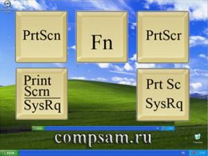 Print_screen_img